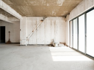 五塘地 铁 金域中 央住宅 毛坯顶跃带露台商品房有电梯