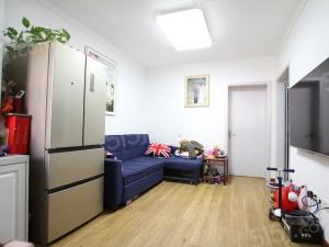 大明路,龙苑新寓 单室套出售 东边户 南北通透 满五年