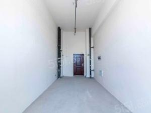 星光耀 低总价 全新纯毛坯 4.5米挑高不压抑 中间楼层